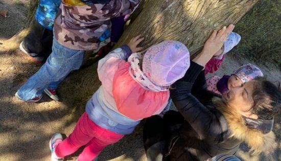 Zemes(diena)nedēļa 2020 – Koki