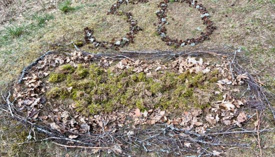 Zemes(diena) nedēļa 2020 – Zemes dienas kūka